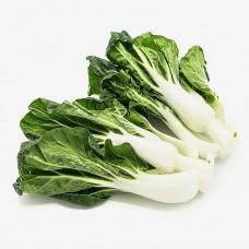 小白菜(白底)